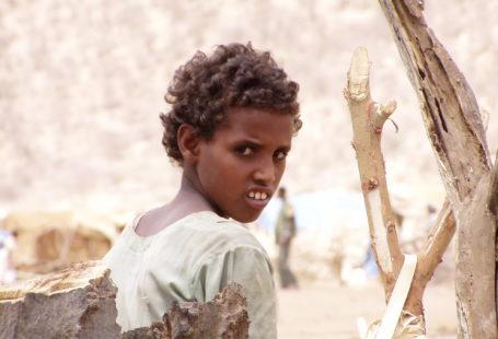 COHI Eritrean refugee