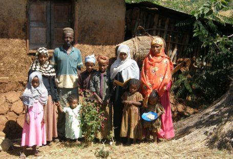 coparenting & diet Ethiopia